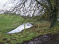 Losset Townland - geograph.org.uk - 303721.jpg