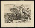 Louise Danse - Hiver (Jardin) - Graphic work - Royal Library of Belgium - S.V 19433.jpg