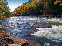 Loyalsock Creek Cascades.jpg