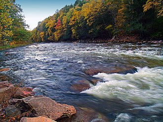 Loyalsock State Forest - Loyalsock Creek in Loyalsock State Forest in Sullivan County