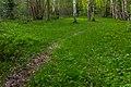 Lugnets naturreservat 2019-05-23 04.jpg