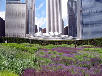Millennium Park - Lurie Garden with Pritzker Pavilion and Randolph Street skyscrapers in the background