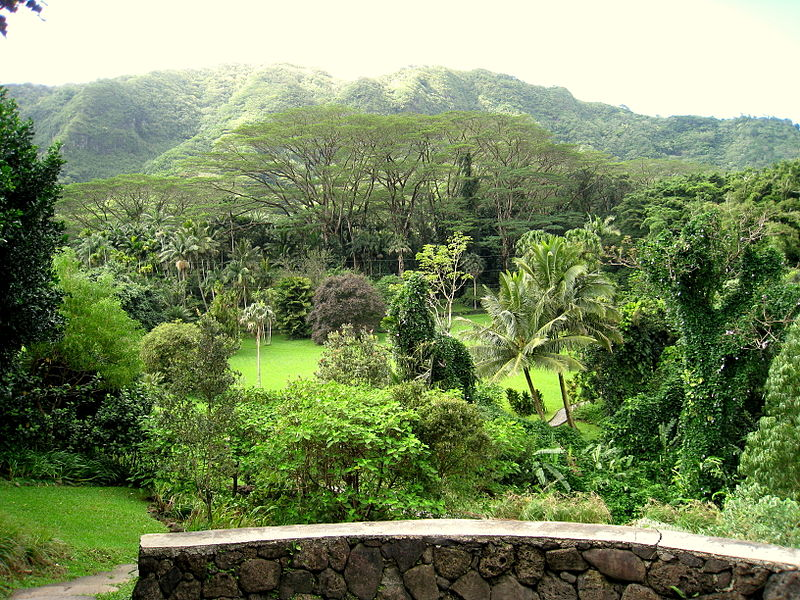File:Lyon Arboretum, Oahu, Hawaii - wall.jpg