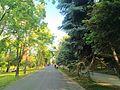 MD.C.C - Valea Morilor - may 2017 - 16.jpg
