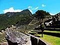 Machu Picchu (Peru) (15070779316).jpg