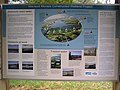 Macleod Morass Reserve Bairnsdale - panoramio.jpg