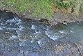 Mahawali river.jpg