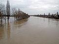 Main-hochwasser-2011-13-of-010.jpg