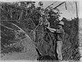 Man rigging kauri log (AM 88382-1).jpg