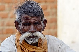 Man with a white moustache, Morena district, India.jpg