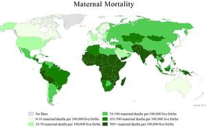 A map of the world showing country-level mater...