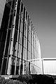 Matthew Knight Arena-2.jpg