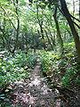 Maya natural observation garden04 2048.jpg