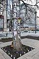 Michael Jackson Memorial Tree, Budapest, Hungary (Ank Kumar) 01.jpg