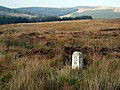 Milepost, moorland and forest near Waterhead on Minnoch - geograph.org.uk - 334146.jpg