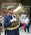 Military orchestra in front of the Stockholm Palace 08 (cropped).jpg