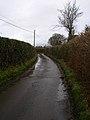 Mill Lane - geograph.org.uk - 335338.jpg