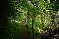 Milltown footpath. - panoramio.jpg