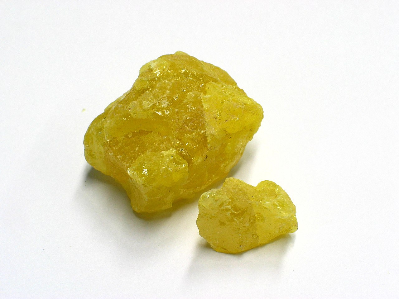 gelber auswurf nase