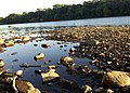 Mississippi River - Coon Rapids, MN - panoramio.jpg
