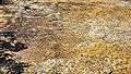 Morrison - Dinosaur Ridge 19-09-2014 12-26-49.JPG