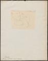 Moschus pelandok - 1783-1811 - Print - Iconographia Zoologica - Special Collections University of Amsterdam - UBA01 IZ21500210.tif