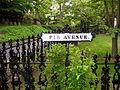 Mount Auburn Cemetery Fir Avenue.jpg
