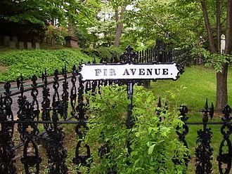 Mount Auburn Cemetery - Image: Mount Auburn Cemetery Fir Avenue