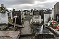 Mount Jerome Cemetery -(8370759015).jpg