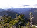 Mountain Top View of Pasayten Wilderness, Mt Baker Snoqualmie National Forest (24857325703).jpg