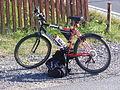Mountain bike3.JPG