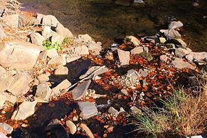 Stone Run (Bowman Creek) - Mouth of Stone Run at State Route 3002
