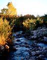 Muddy River 1024x768.jpg