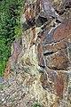 Muscovite schist (Precambrian; Blue Ridge, North Carolina, USA) 1.jpg