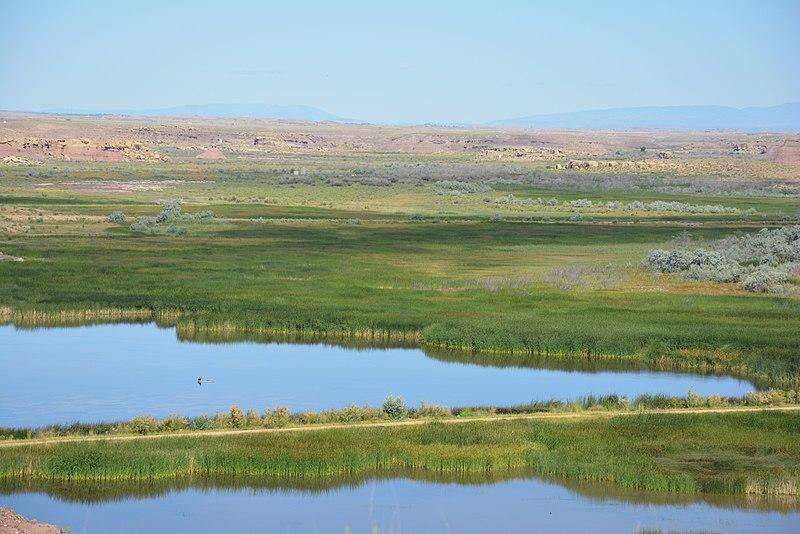 File:My Public Lands Roadtrip- Pariette Wetlands in Utah (20220345702).jpg