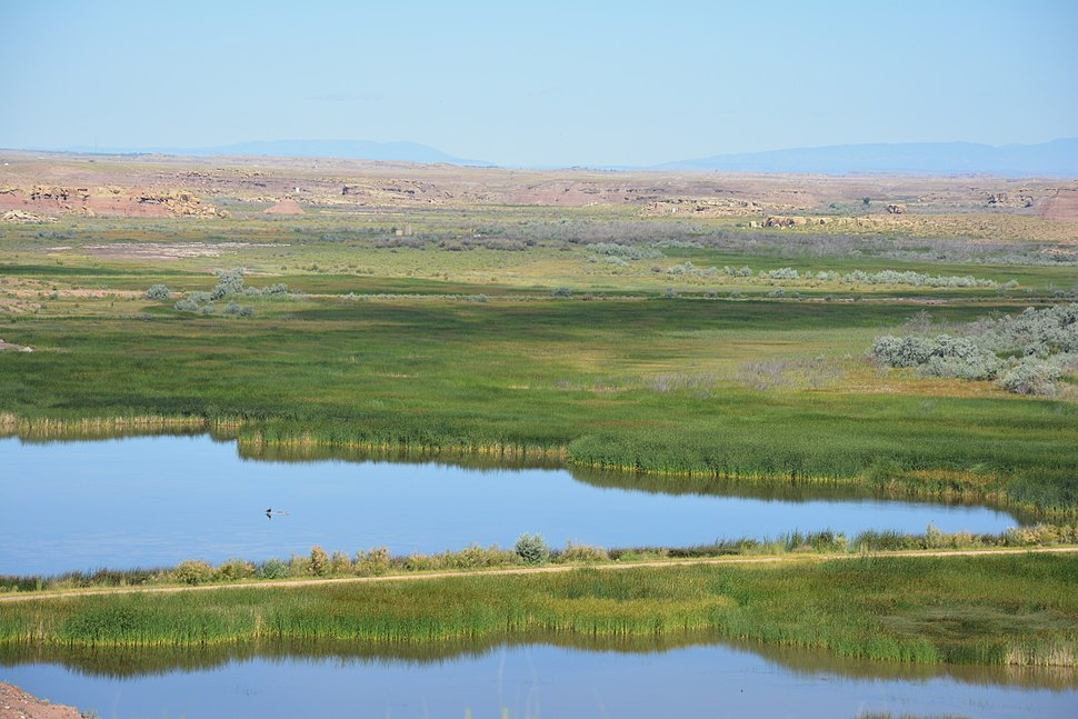 My Public Lands Roadtrip- Pariette Wetlands in Utah (20220345702)