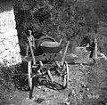 """Na vozu z legnarji vozijo sod za mošt in """"maln"""" (mlin) za grozdje mlet. Trebelno 1951.jpg"""