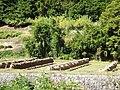 Nakazawa, Komagane, Nagano Prefecture 399-4231, Japan - panoramio.jpg