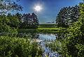 Nature landscape ukraine poltava (8093168012).jpg