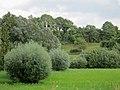 Natuurreservaat Overbroek - panoramio.jpg