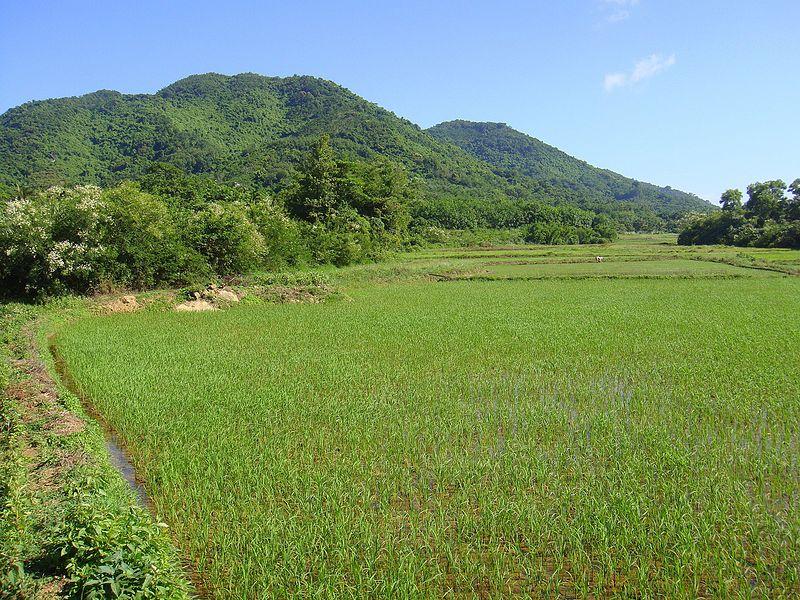 Near Xinlong, Hainan - 02.JPG