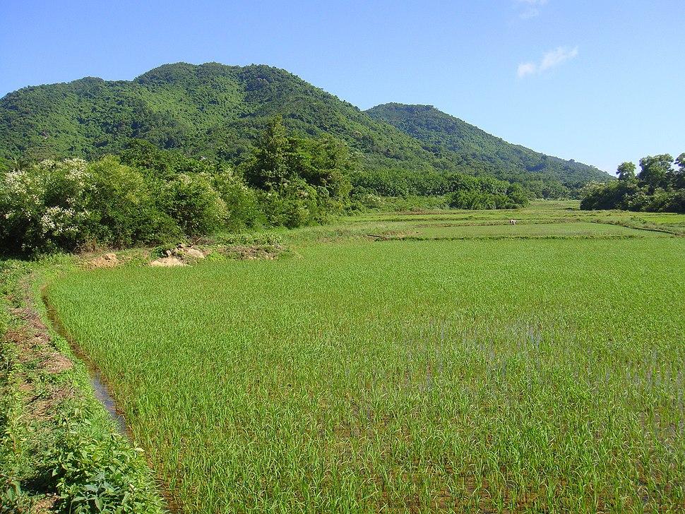 Near Xinlong, Hainan - 02