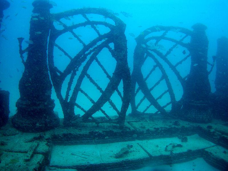 Things to Do in Florida Neptune Memorial Reef