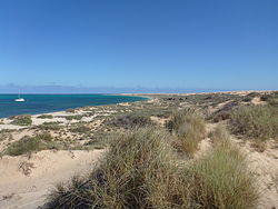 Ningaloo reef shoreline.JPG