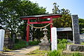 Ninomiya-akagi-jinja torii.JPG