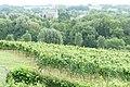 Noorbeek P1080565.jpg