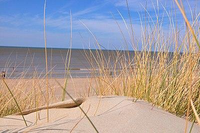 Nord - Plage du Bray-Dunes 1.JPG