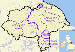 History of local government in Yorkshire - Two unitary authorities