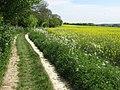 North Downs Way - geograph.org.uk - 1301391.jpg