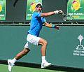 Novak Djokovic (16837414652).jpg